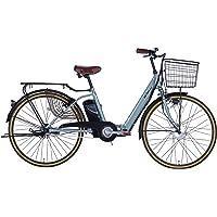 21Technology 電動アシスト自転車 (26インチ) 自転車 電動アシスト オールワン 折りたたみ 折りたたみ電…