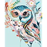 Acrylic Paint by Number Kit On Canvas for Adults Beginner 16X20 Inch (Rainbow Owl)
