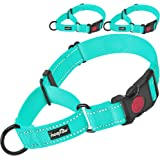 haapaw Martingale Dog Collar with Quick Release Buckle Reflective Dog Training Collars for Small Medium Large Dogs(2 Packs) (
