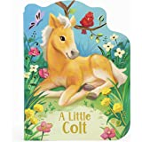 A Little Colt: A Baby Horse Board Book Story