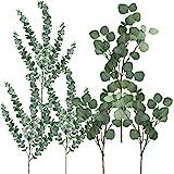 Winlyn Mixed Faux Eucalyptus Leaves Spray Artificial Eucalyptus Branches Plants Fake Silver Dollar Eucalyptus Leaf Sprays Art