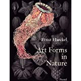 Art Forms in Nature: The Prints of Ernst Haeckel (Monographs)