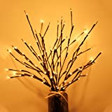 RENUS Branch Lights,6Packs Twig Light USB Powered 8 Flashing Modes by Remote Control.Branch Lights for Indoor and Outdoor, Li
