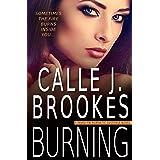 Burning (PAVAD: FBI Romantic Suspense Book 13)
