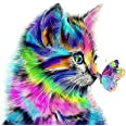 Paint by Numbers-DIY Digital Canvas Oil Painting Adults Kids Paint by Number Kits Home Decorations- Cat and Butterfly 16 * 20