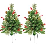 Homekaren 24 inch Prelit Christmas Tree 2 Set Pathway Christmas Trees Pre-Light LED Battery Operated Outdoor Xmas Decor for D