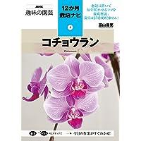 コチョウラン (NHK趣味の園芸12か月栽培ナビ(3))