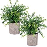 CEWOR 2pcs Fake Plants Indoor Artificial Bamboo Plants Fake Green Grass Potted Plastic Plants for Home Office Party Decoratio