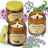 SCENTORINI アロマキャンドル 木製の芯 aroma candle キャンドル セージ ローズマリー 美女桜 きゃどる 香り付きキャンドル ろうそく ワックスキャンドル プレセントセット おしゃれ 人気 香り付きろうそく 誕生日プレゼント 贈