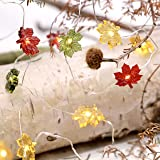 Colour Maple Leaves Fairy String Lights - 40 LEDs 10ft Copper Wire with Remote for Thanksgiving Harvest Decorations Birthdays