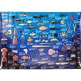 深海生物 ポスター 特大サイズ 深海大全 お風呂ポスター 図鑑 A1 サイズ 841×584mm ki-090-b