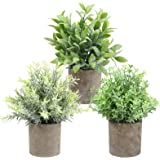 THE BLOOM TIMES Set of 3 Small Artificial Plants in Pots Rustic Plastic Fake Greenery Eucalyptus Rosemary Faux Potted Plants
