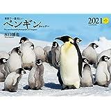 2021年 ワイド判カレンダー 世界で一番美しいペンギン カレンダー (誠文堂新光社カレンダー)
