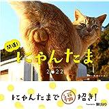 2022カレンダー 開運! にゃんたまカレンダー ([カレンダー])