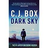 Dark Sky (Joe Pickett Book 21)