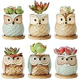 T4U Ceramic Succulent Pots with Bamboo Saucers Mini Size Set of 6, Cute Owl Bonsai Pots Home and Office Decoration Desktop Wi