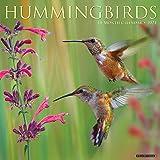 Hummingbirds 2021 Wall Calendar