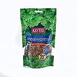 Kaytee Mealworm Food Pouch for Wild Birds, 3.5 Ounces