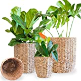 Set of 3 Handwoven Natural Seagrass Plant Pot Basket Minimalist Indoor Flower Container Planter Plastic Lining Wicker Large 1