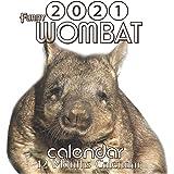 Wombat Calendar 2021: Wombat Australian Animal Funny 8.5x8.5 Inch Wall 2021 Calendar