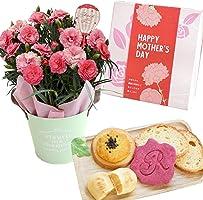 花由 母の日 さくらもなかカーネーションの鉢花と焼き菓子詰め合わせのセット