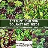 Lettuce Mixed 400+ Seeds All Type Gourmet Mix Salad Heirloom Vegetable Garden