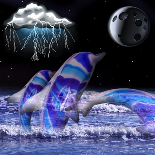 イルカ時計と天気