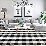 "KaHouen Buffalo Check Rug, Buffalo Plaid Rug (23.6""x51.2""), Checkered Plaid Rugs, Checkered Outdoor Rug for Kitchen/Living Ro"