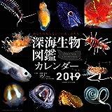 カレンダー「深海生物図鑑」2019年版