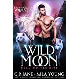 Wild Moon: A Rejected Mate Romance