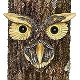 Bits and Pieces - Owl Face Tree Hugger - Garden Peeker Yard Art - Outdoor Tree Hugger Sculpture Whimsical Tree Face Garden De