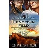 Fenced-In Felix (Girl Meets Girl Series Book 3)