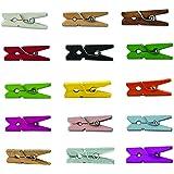 "LWR CRAFTS Wooden Mini Clothespins 15 Colors 100 Per Pack 1"" 2.5cm (All)"