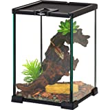 REPTI ZOO Mini Reptile Glass Terrarium,Full View Visually Appealing Mini Reptile Glass Habitat