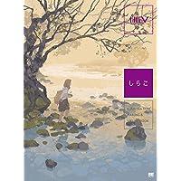 ILLUSTRATION MAKING & VISUAL BOOK しらこ