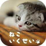癒しのねこ育成ゲーム3D