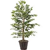 Vickerman TBU0140 4-Feet Artificial Natural Ficus Bush with Dark Green Leaves in Decorative Rattan Basket