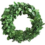"Creative Co-Op DA5819 Round Boxwood Wreath, 6"", Green"