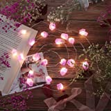 Nature Amethyst Crystal Raw Stones Decorative String lights 6.5ft 20LEDs with Remote Control, Hanging Healing Reiki Ornaments
