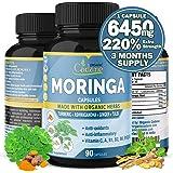 Organic Moringa Extract Capsules 6450MG with Turmeric, Ashwagandha, Ginger, Tulsi |Multi Vitamin Oleifera Leaf Herb|Support I