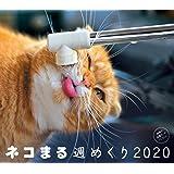 2020カレンダー ネコまる 週めくり ([カレンダー])