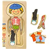 Kidzlane Wooden My Body Puzzle for Toddlers & Kids - 29 Piece Boys Anatomy Play Set Ages 3+