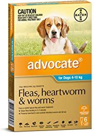 Advocate Dog 4-10kg 6 Flea Worm Etc Pet Meds, 6 Count, Aqua