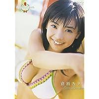 ミスマガジン2006 倉科カナ [DVD]