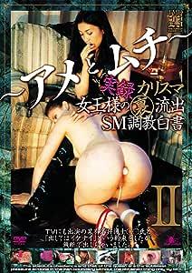 実録 カリスマ女王様裏流出 SM調教白書 ~アメとムチ~ [DVD]