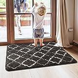 DEXI Original Indoor Doormat, Durable Absorbent Door Mats Indoor Rug, 59x36 Machine Washable Low-Profile Inside Door Mat for