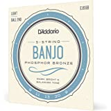 D'Addario EJ69 Light 9-20 Phosphor Bronze 5-String Ball End Banjo String