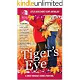 Tiger's Eye - RWA Little Gems Short Story Anthology