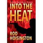 Into The Heat: A Women Sleuths Mystery Romance (Sandy Reid Mystery Series Book 6)