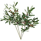 ShoppeWatch Artificial Olive Leaves and Stems with Fruit for Decoration Faux Tree Plant Olives Leaf Home Kitchen Party Plasti